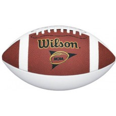 Wilson OfficialNCAA Autograph Football, WTF1196