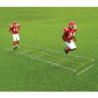 Fisher Agility Master High Step Trainer, 30'