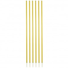 Champion CS6 Coaching Sticks, set of 6