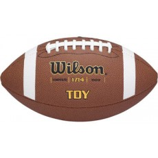 Wilson TDY Official Composite Football, age 11-14