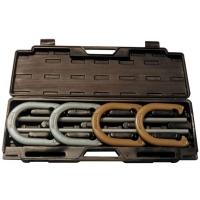 Champion Steel Horseshoe Set