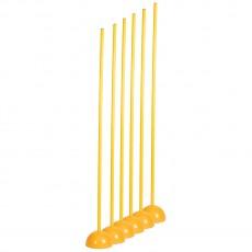 Champion Set of 6 Coaching Sticks w/ Base, CK 60