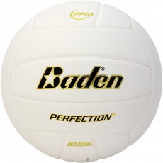 Baden VX5E Perfection 15-0 Leather Game Volleyball, WHITE
