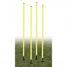 Champion APSET Outdoor Agility Pole Set, set of 4