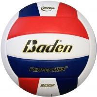 Baden VX5E Perfection 15-0 Leather Game Volleyball, COLORS