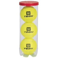 Wilson WRT1019W Practice Tennis Balls, Case of 72