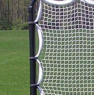 Elastic webbed for superior rebounding