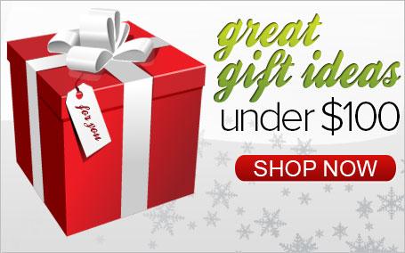 Great Gift Ideas Under $100