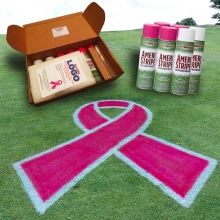 Pink Ribbon Stencil Paint Kit