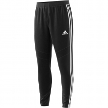 Adidas Men's Tiro 19 Training Pant