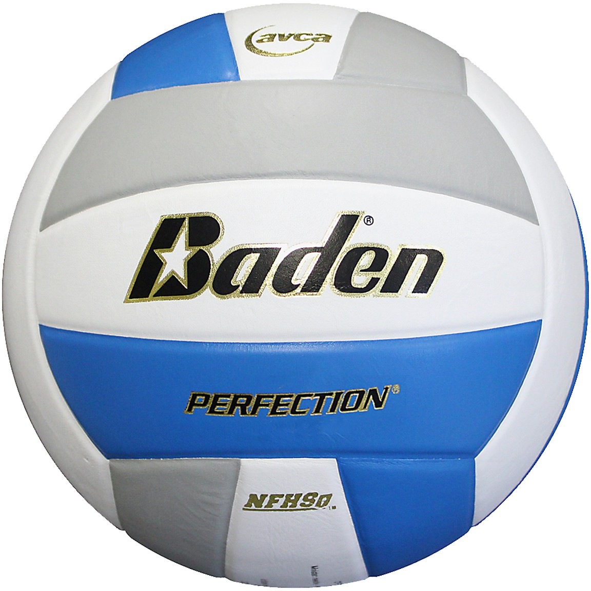 Baden Vx5e Perfection 15 0 Leather Game Volleyball Colors