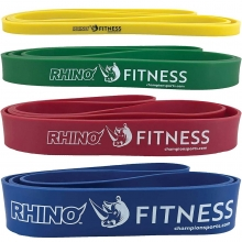 Champion Rhino Stretch Training Fitness Bands