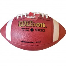 Wilson Pop Warner TDY age 12-14 Official Leather Football