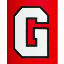 Fisher 2 COLOR Traditional Vinyl Lettering for Football Goal Post Pads